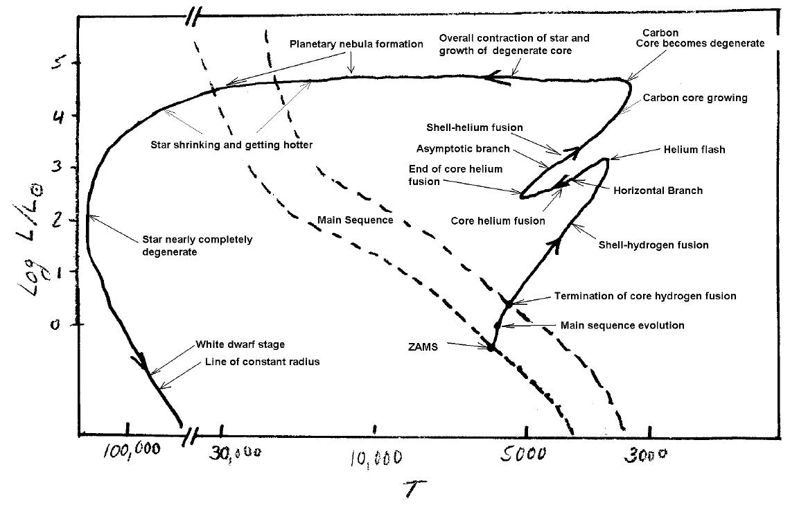 diagram of white dwarf star - photo #44